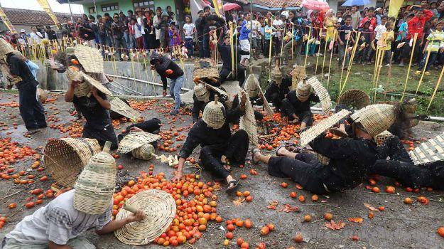 Cuộc chiến ném cà chua cực thú vị ở Indonesia