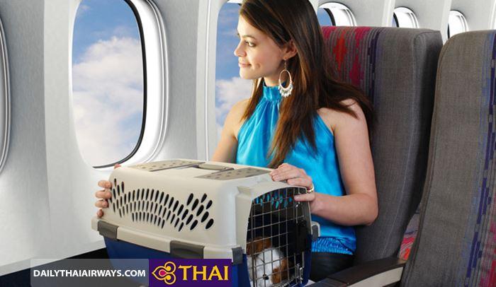 Trường hợp vật nuôi coi như hành lý ký gửiTrường hợp vật nuôi coi như hành lý ký gửi